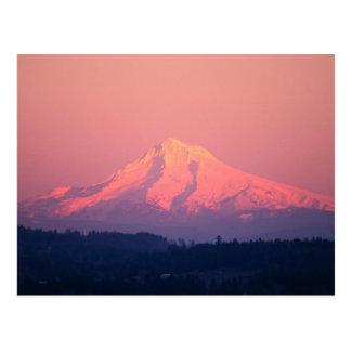 Dusky Pink Mountain Postcard