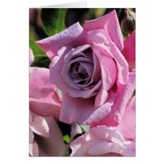 Dusky Pink Rose Greeting Card