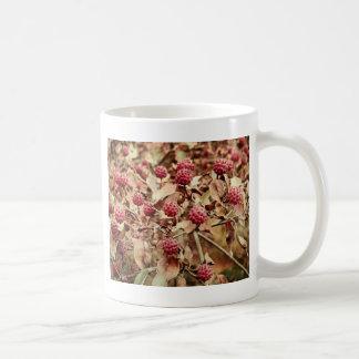 Dusky Rose Bentham's Cornel (Kousa Dogwood) Coffee Mug