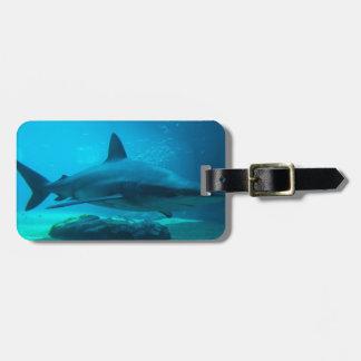Dusky Shark (Carcharhinus Obscurus), Ushaka Bag Tag