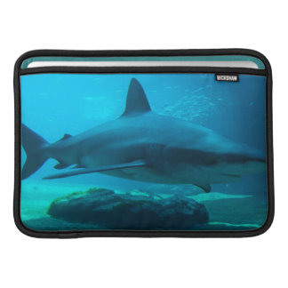 Dusky Shark (Carcharhinus Obscurus), Ushaka MacBook Sleeve