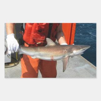 Dusky shark rectangular sticker