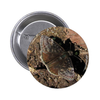 Duskywing Butterfly ~ button