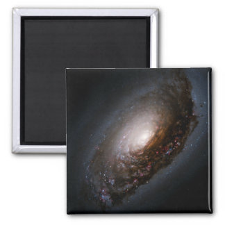Dust Band Around the Nucleus of the Black Eye Gala Magnets