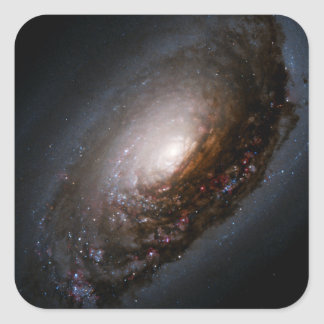 Dust Band Around the Nucleus of the Black Eye Gala Square Sticker