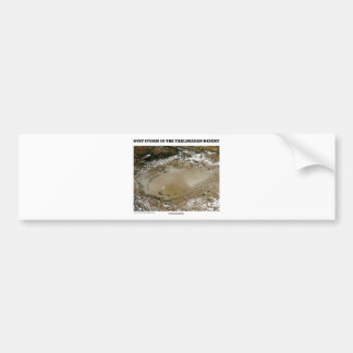 Dust Storm In The Taklimakan Desert Picture Earth Bumper Sticker