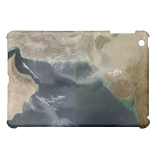 Dust storms iPad mini case
