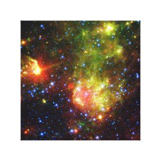 Dusty death of massive star NASA Canvas Print
