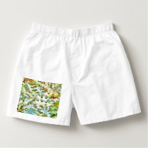 Dusty Miller Abstract Pop Art Boxers