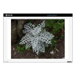 """Dusty Miller Decal For 17"""" Laptop"""