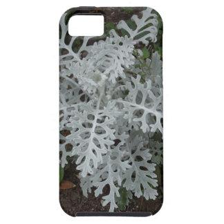 Dusty Miller iPhone SE/5/5s Case