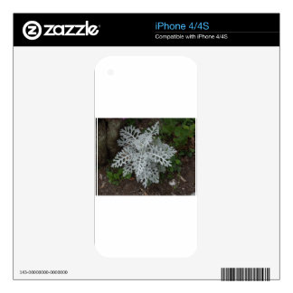 Dusty Miller Skin For The iPhone 4S