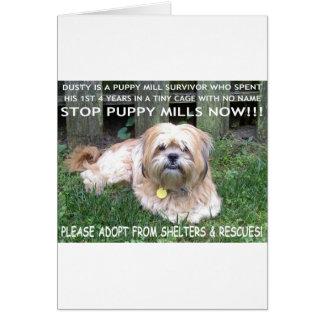 DUSTY - PUPPY MILL SURVIVOR CARD