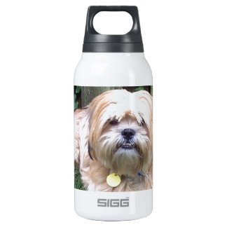 DUSTY - PUPPY MILL SURVIVOR INSULATED WATER BOTTLE