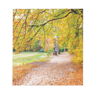 Dutch autumn landscape with footpath and tree notepad
