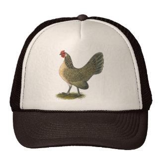 Dutch Bantam:  Blue Quail Hen Mesh Hats