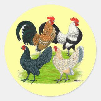 Dutch Bantam Quartet Classic Round Sticker