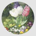 Dutch Bulb Spring Flowers Classic Round Sticker