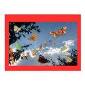 Dutch Butterflies Red Happy Birthday Postcard
