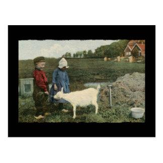 Dutch Children with Feeding Their Goat Postcard
