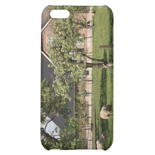 Dutch farm iPhone 5C cover