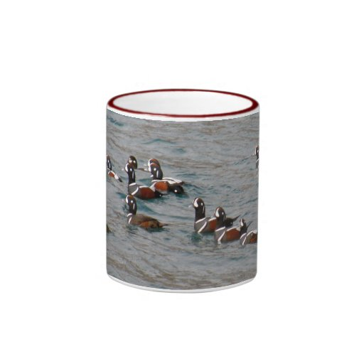 Dutch Harbor, Alaska:  Harlequin Ducks Mugs