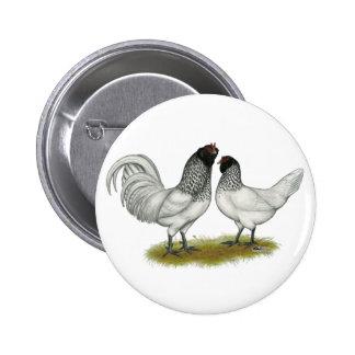 Dutch Owl Beard Chickens Buttons