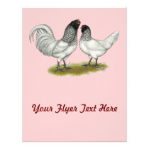 Dutch Owl Beard Chickens Flyer