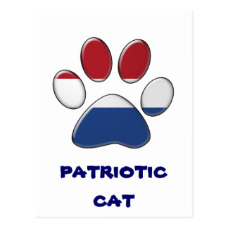 Dutch patriotic cat postcard