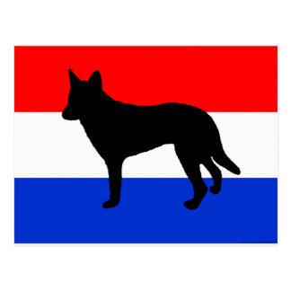 dutch shepherd silhouette flag postcard