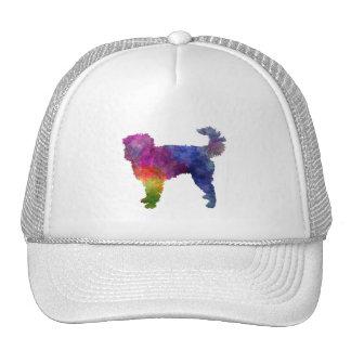 Dutch Smoushond in watercolor Trucker Hat