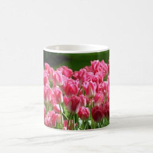 Dutch Tulips Coffee Mug