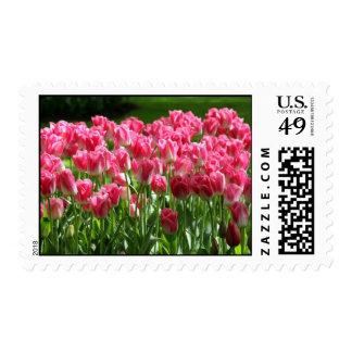 Dutch Tulips Postage
