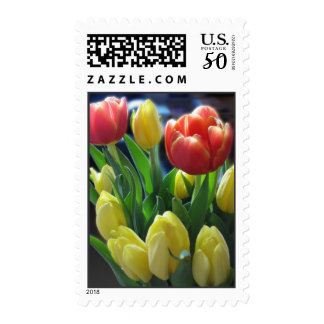 Dutch Tulips Postage Stamps
