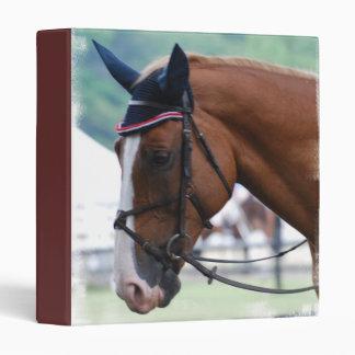 Dutch Warmblood Horse Binder