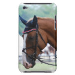 Dutch Warmblood Horse iTouch Case Barely There iPod Covers
