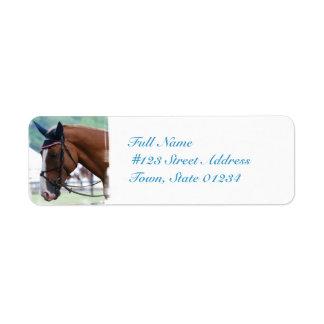 Dutch Warmblood Horse Mailing Label