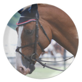 Dutch Warmblood Horse Plate