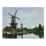 Dutch Windmills, 1884 Postcard