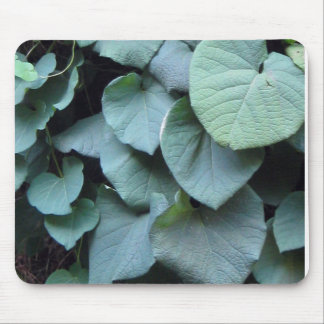 Dutchman's Pipe leaves Mouse Pad
