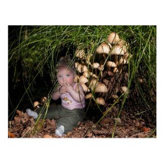 Dwarf at the tree mushroom postcard
