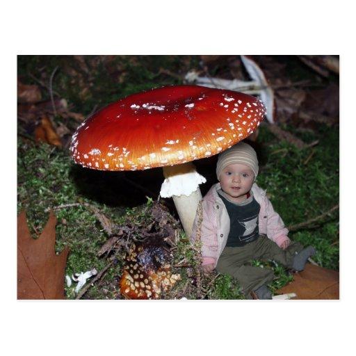 Dwarf - dwarf under fly agaric postcard