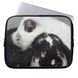 Dwarf-eared rabbit leaning over lop-eared computer sleeve