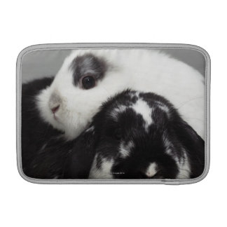 Dwarf-eared rabbit leaning over lop-eared MacBook air sleeve