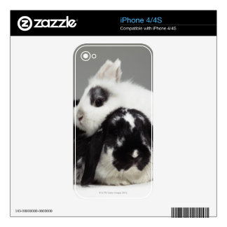 Dwarf-eared rabbit leaning over lop-eared iPhone 4S skin