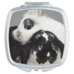 Dwarf-eared rabbit leaning over lop-eared makeup mirrors