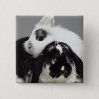 Dwarf-eared rabbit leaning over lop-eared pinback button