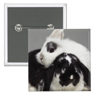 Dwarf-eared rabbit leaning over lop-eared pinback button