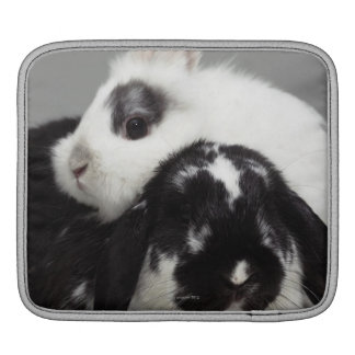 Dwarf-eared rabbit leaning over lop-eared sleeve for iPads