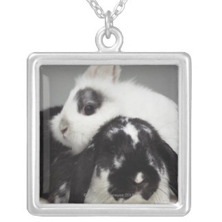 Dwarf-eared rabbit leaning over lop-eared square pendant necklace